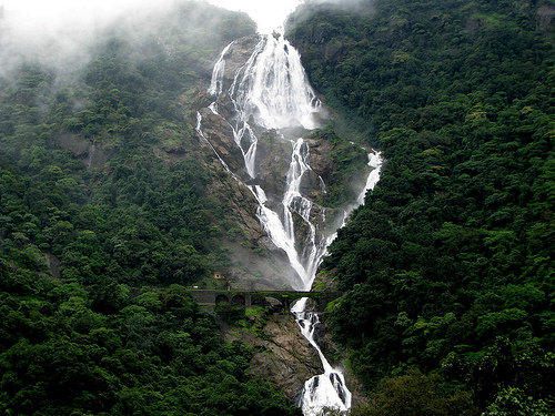 Goa things to do at Dudhsagar water falls
